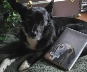 Book Review: Inside of a Dog