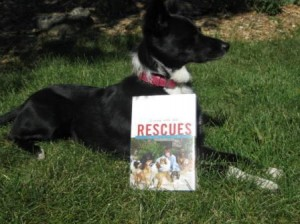 Dog Book Review: Living With The Rescues