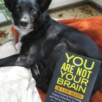 best dog blog, champion of my heart, photo of dog with book