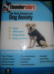 best dog blog, champion of my heart, ThunderShirt