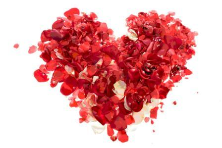 best dog blog, champion of my heart, heart made from rose petals