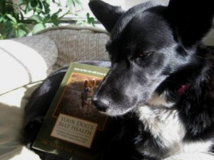 Dog Book Review: Your Dog's Best Health