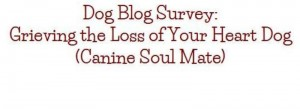 Dog Blog Survey: Grieving the Loss of Your Heart Dog (Canine Soul Mate)