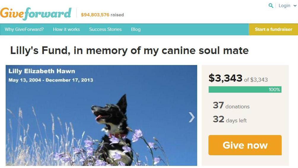 Lilly's Fund reaches 100% of fundraising goal