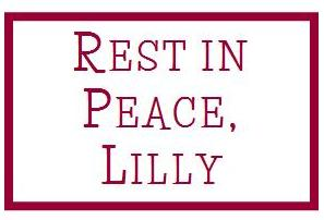 Rest in Peace, Lilly