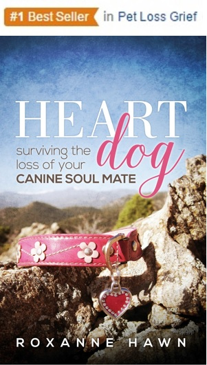 amazon best seller heart dog surviving the loss of your canine soul mate by roxanne hawn