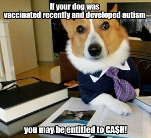 Rant: 3 Reasons This Joke About Adverse Dog Vaccine Reactions Makes Me Livid