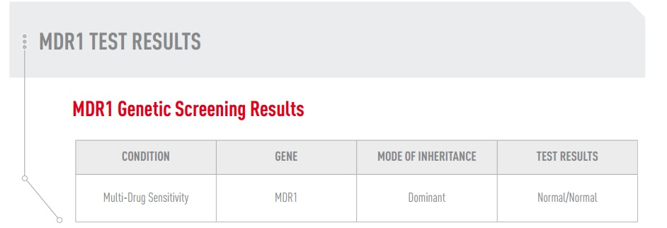 dog blog champion of my heart canine genetic test results MRD1 status graphic