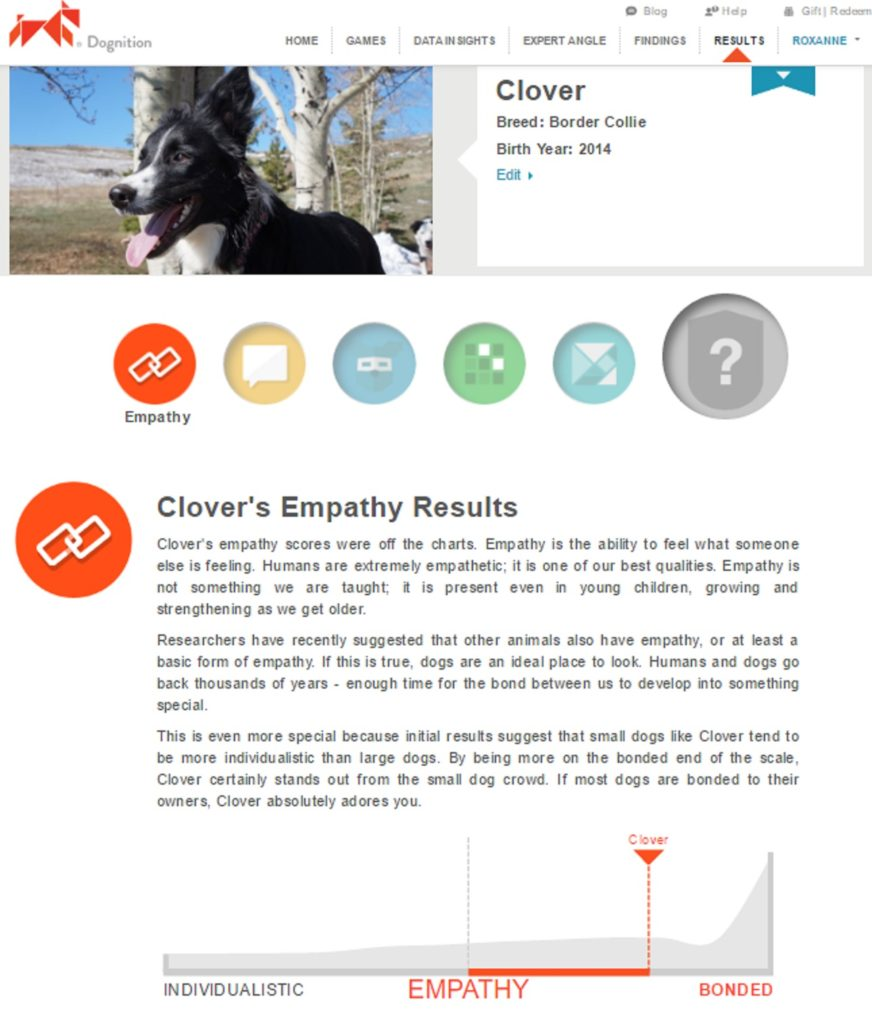 dognition empathy game results for clover from champion of my heart