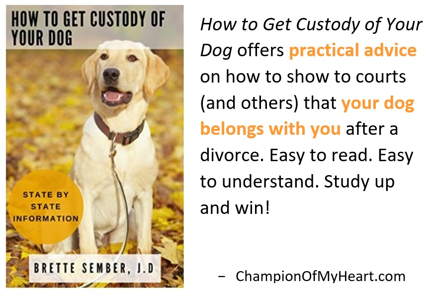 book review how to get custody of your dog graphic