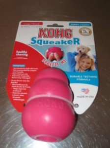 dog product review, kong squeaker, champion of my heart, dog blog