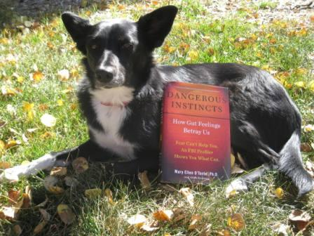 champion of my heart, best dog blog, dangerous instincts book with border collie holding it up