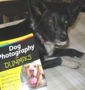 Book Review: Dog Photography for Dummies