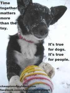 Holiday Advice from Champion of My Heart Dog Blog