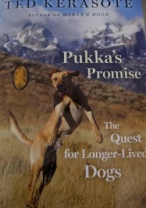 Dog Book Review: Pukka's Promise