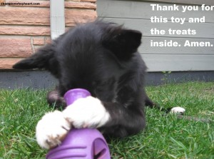 Meme Mood Monday – Giving Thanks