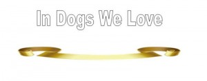 Dog Bloggers Unite in Grief and Charity