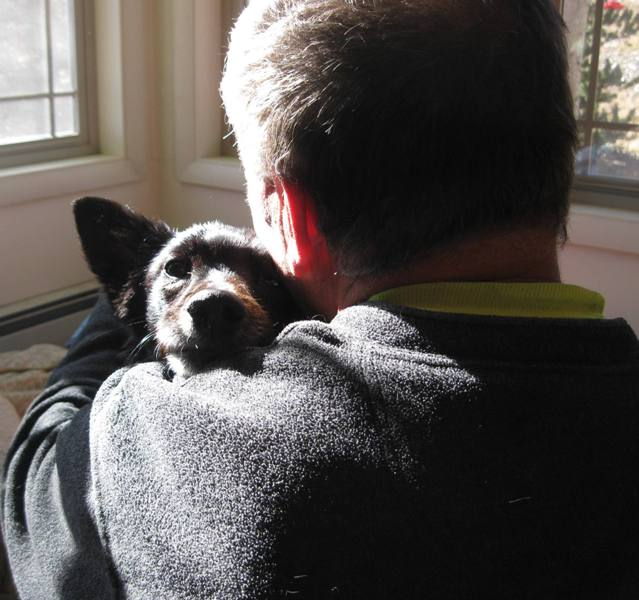 border collie hugging her human daddy