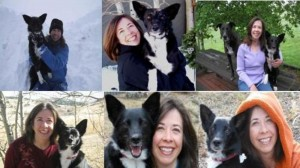 10 Must-Have Dog Photos and Videos