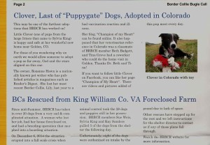 BRBCR article, puppygate, hoarding