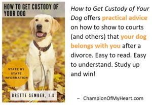 Book Review How to Get Custody of Your Dog