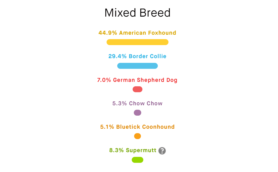 dog dna test results mr stix breed percentages
