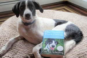 black and white dog with book called one hundred dogs and counting