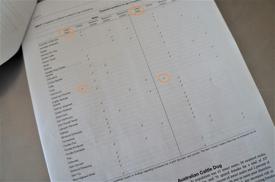 spay or neuter research recommendation chart showing recommended age of spay or neuter by breed and sex