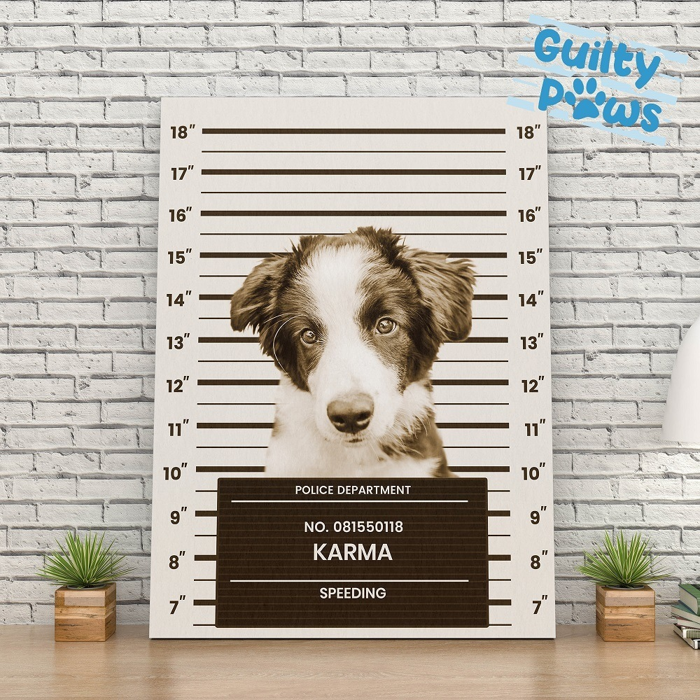 guilty paws custom dog portraits promo codes