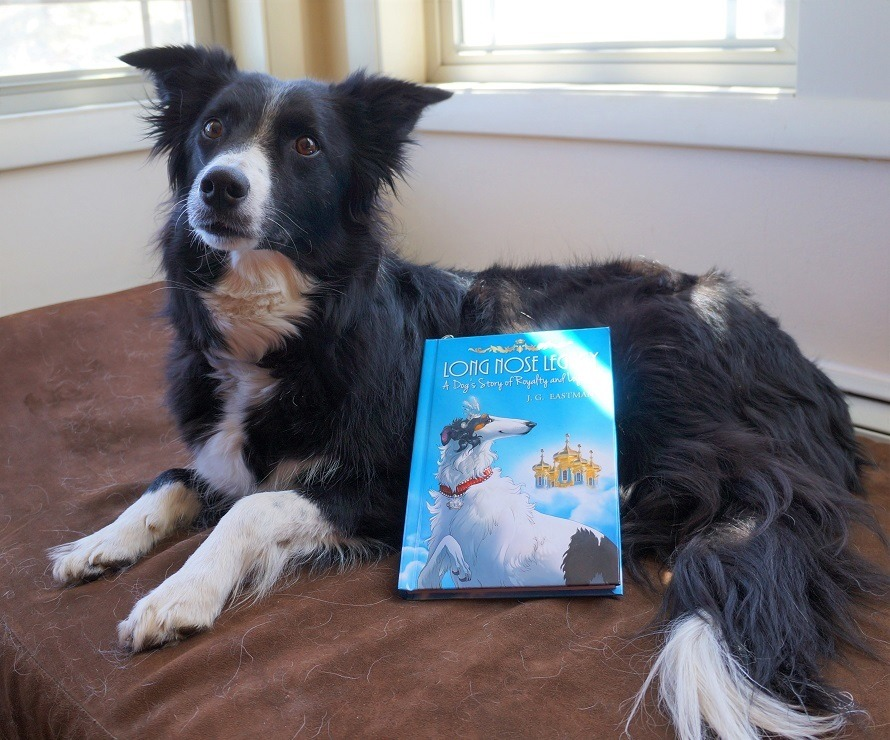 long nose legacy book review image 1 - border collie with book propped up against her